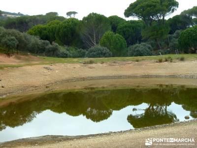 Garganta de Picadas - Vía Verde del Alberche;excursiones desde madrid de un dia